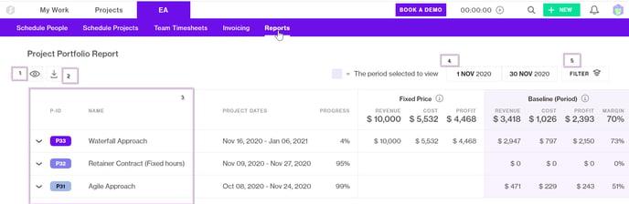 Project Portfolio Report structure-1