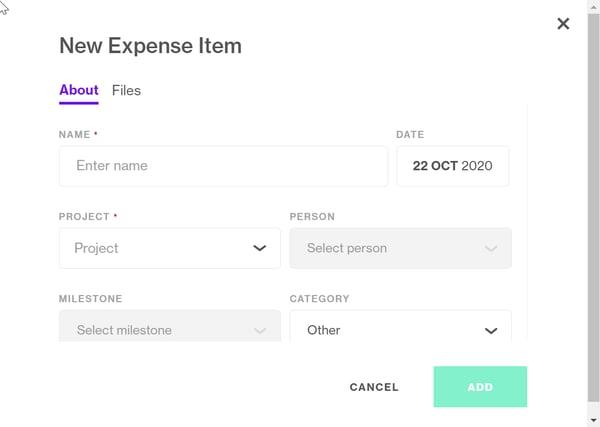 new expebse item